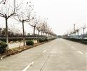 锦隆-巴士驾校