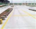 保定市中兴驾校坡道定点停车和起步场地