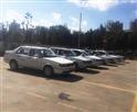 康盛驾校训练车型